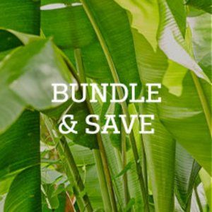 Bundle two or more items and save!